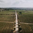 Casa de Santar, DOC 2017, červené víno, 750 ml