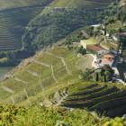 Crasto Douro 2018, DOC, červené víno, 750 ml